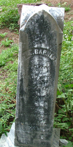 W. F. Barnes