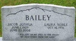 Jacob Joshua Bailey