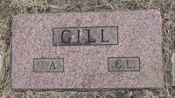 Fannie A. <i>McGlohen</i> Gill