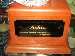 Ashlee Pankowski