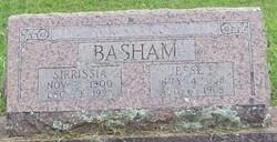 Sirrissia <i>Smith</i> Basham