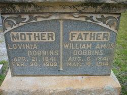 William Amos Dobbins