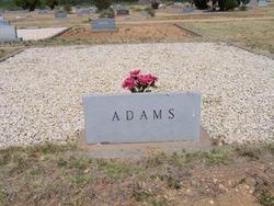 Hazel B Adams