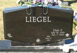 Dale E Liegel