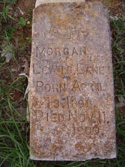 Morgan Lewis Lane