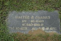 Walter Ervin Barnes