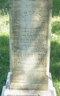 Aldin V Eastman