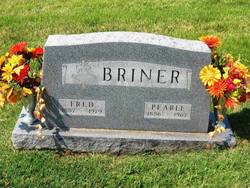Mattie Pearl <i>Lane</i> Briner