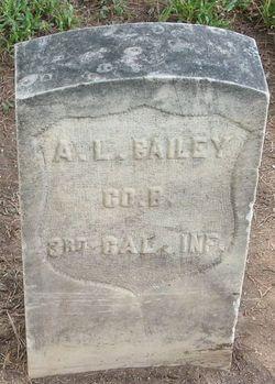 Aldis L Bailey