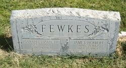 James Herbert Fewkes