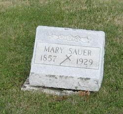 Mary B Sauer