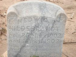 Hedwig O Hildebrandt