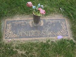 Wayne H Anderson