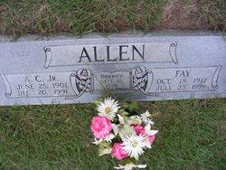 Fay <i>Moore</i> Allen