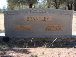 Sarah Jane <i>Doggett</i> Brantley