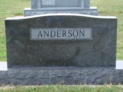 Ray P. Anderson