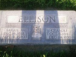 Crandle Ellison