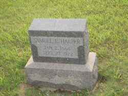 Samuel E Harper