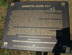 Sarepta Fly