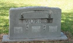 Annie <i>McGaughey</i> Morris