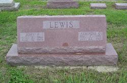 Armindia <i>Copeland</i> Lewis