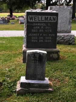 Samuel Osgood Wellman