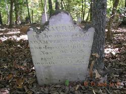 Adams Ferguson, Jr