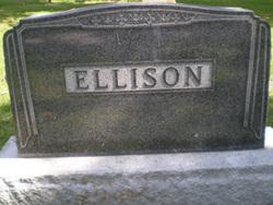 T Frank Ellison