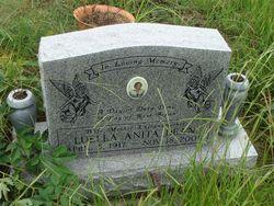 Luella Anita Dean