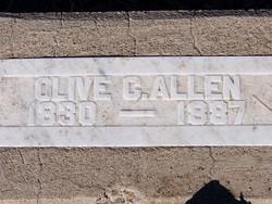 Olive C Allen