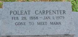 Poleat Carpenter