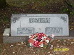 Myrtle Hannah <i>Bunner</i> Gates