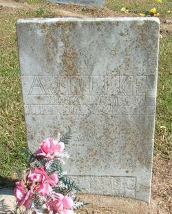 Andrew Jackson Duke