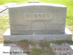 James Arthur Burney