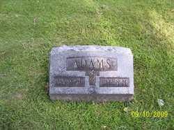 Ellen M Adams