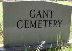 Vera Virginia <i>Sanders</i> Gant