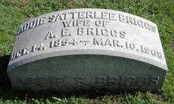 Addie Lee <i>Sattler</i> Briggs