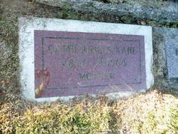 Catherine S Kane