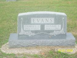 Donnie Ellen <i>Huchingson</i> Evans