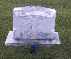 Ellis Woodrow Brown