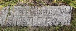 Manasses Schmucker