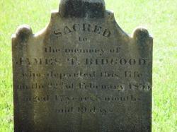 James T Bidgood