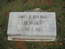 James E Hannah