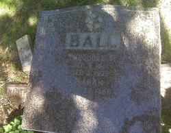 Theodore T Ball