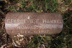 George W.C. Hammel