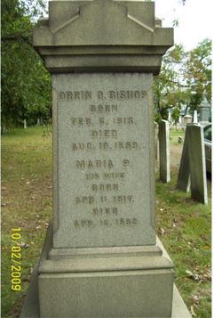 Maria P. Bishop