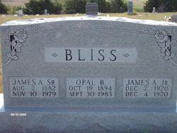 James A. Bliss, Jr