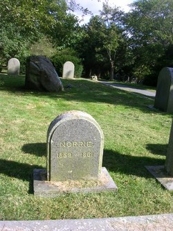 Norrie Simpkins