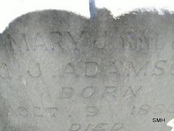 Mary J. <i>Robinson</i> Adamson