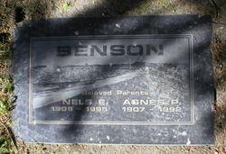 Agnes P Benson